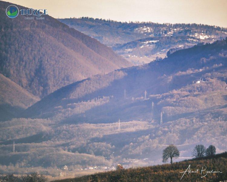 Sarıdere - Elmacık  Kekik Tepesi