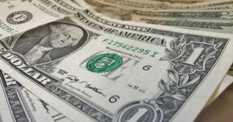 Capital Economics'in yıl sonu dolar tahmini korkuttu!