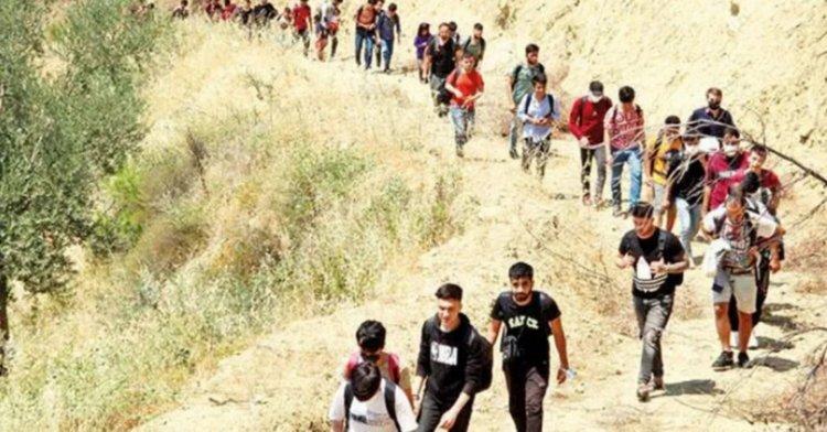 İçişleri, Türkiye'de yakalanan Afgan sığınmacı sayısını açıkladı!